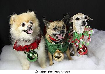 Perros de Navidad con adornos