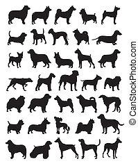 Perros populares crían siluetas