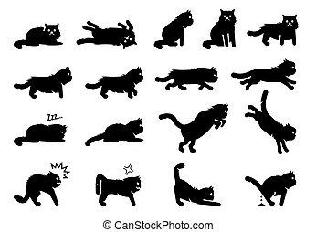 persa, posturas, icons., posturas, acciones, gato, emociones