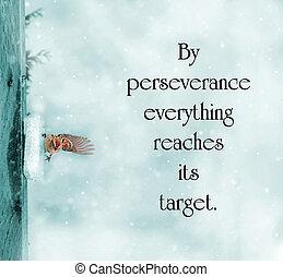 perseverancia, sobre, image., gorrión, cyanotype, poco, catalán, inspirador, proverbio, sobrevivir, luchar, palabras, invierno, toned