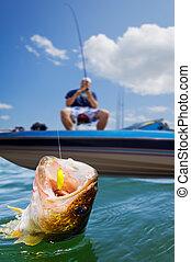 pesca del deporte