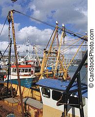 Pescando barcos en el puerto de Plymouth