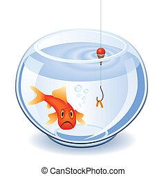 Pescando en pecera