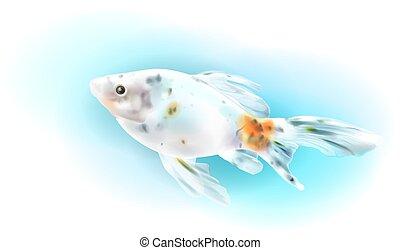Pez dorado en el mar. Pescado de acuario. Ilustración realista.