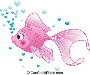 pez, lindo