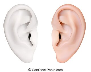 photo-realistic, ear., vector., aislado, humano, blanco