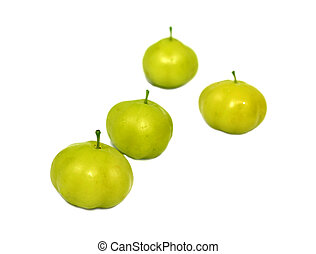 Phyllanthus acidus orboroi fruta