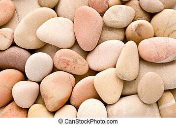 Pibbles calientes