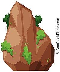 Piedra con arbusto verde
