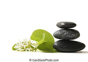 Piedras clavadas con flor