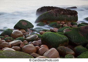 Piedras en la costa de Nutria Cliffs con agua borrosa, Parque Nacional de Acadia, Maine, EE.UU