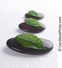 Piedras Zen con hojas