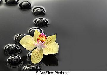 Piedras zen negras y orquídeas en aguas tranquilas