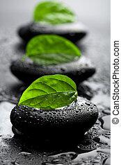 Piedras Zen y hojas con gotas de agua