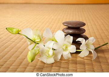Piedras Zen y orquídeas