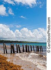 Pier zancos en la playa