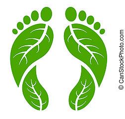 pies, verde