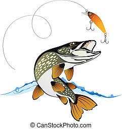 Pike y cebo para pescar