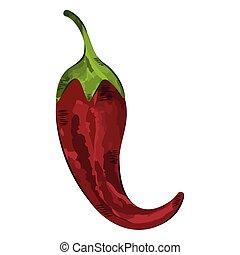 pimienta, chile, rojo