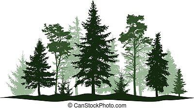 Pino del bosque Evergreen, árbol aislado. Park, árbol de navidad del callejón. Ilustración de vectores. Un paisaje de árboles aislados