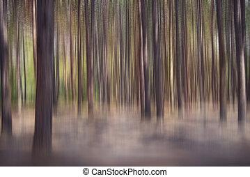 pino, resumen, plano de fondo, bosque