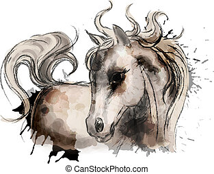 Pintura de caballo de acuarela