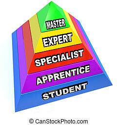 pirámide, experto, maestría, subida, habilidades, maestro, estudiante