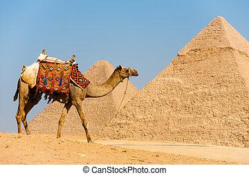 Pirámides ambulantes