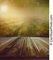 Piso de madera con un camino de pradera en el fondo