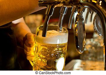 plan preliminar, cerveza, dispensación, bar