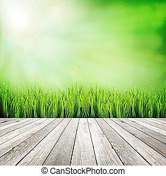 Plancha de madera sobre fondo abstracto natural verde