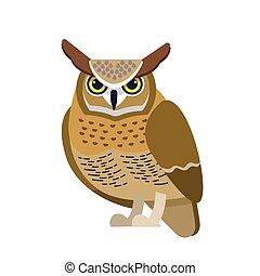 plano de fondo, búho, mainly, plano, birds., caricatura, hermoso, blanco, nocturno, pájaro, carácter, ilustración, estilo, águila, enastado, presa, ornitología, vector, aislado