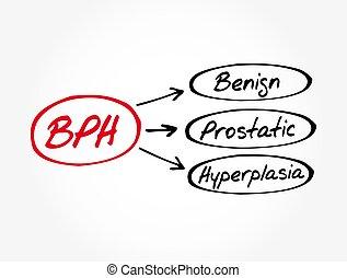 plano de fondo, benigno, prostatic, concepto médico, -, bph, hyperplasia, siglas