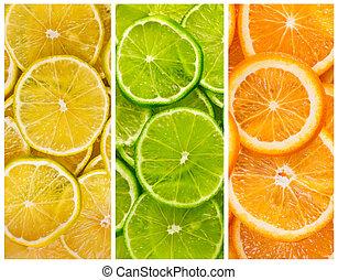 plano de fondo, citrus-fruit