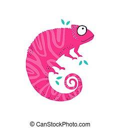 plano, rosa, chameleo, poco, lindo