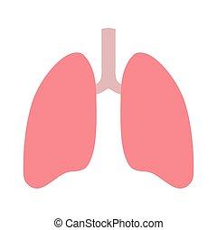 plano, sano, blanco, interno, humano, sistema, pulmones, órgano, icono, encima, fondo., respiratorio