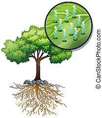 planta, árbol, células, verde, cierre, grande