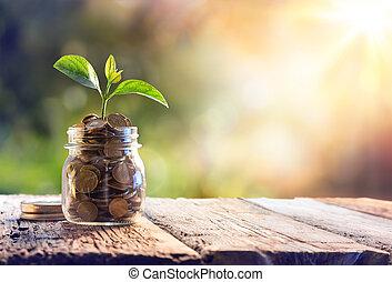 Planta creciendo en monedas de ahorro