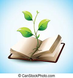 Planta creciendo en un libro abierto