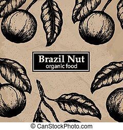 Planta de diseño de árboles de nueces de Brasil. Antecedentes florales antiguos. Ilustración de vectores.