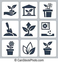 Planta vector creciendo iconos