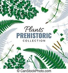 plantas, 1909.i003.029.f.m005.c7.prehistoric
