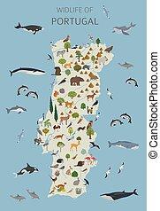 plantas, colección, animales, geografía, wildlife., poseer, elementos, su, constructor, plano, set., blanco, portugal, construya, diseño, aves, infographics, aislado