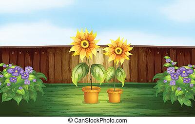 Plantas dentro de una cerca
