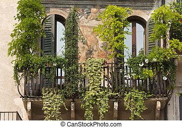 plantas, plaza, verona, casa, frescos, erbe, histórico, italy), (veneto