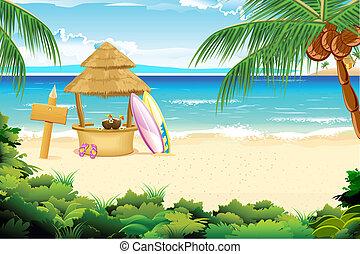 playa, calma