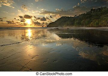 Playa de la jungla Costa Rica