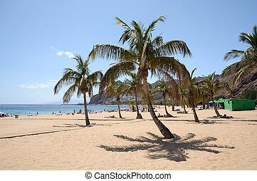 Playa de las teresitas, canaria isla tenife, España
