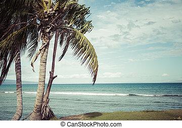 Playa Kaanapali, destino turístico Maui Hawaii