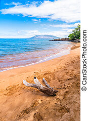 Playa Makena, destino turístico famoso en Maui, Hawaii